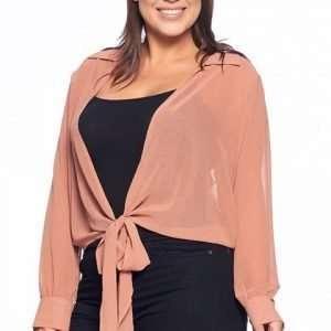 sheer mauve wrap blouse plus