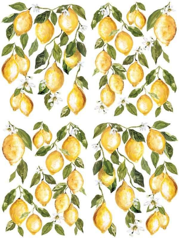 lemon drops example